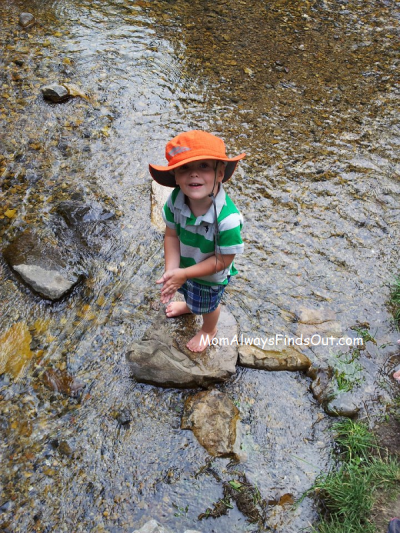 nature hike outdoor activites for kids