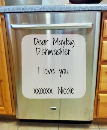 maytag ss dishwasher